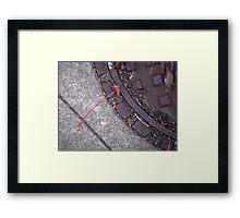 Single Stem Framed Print