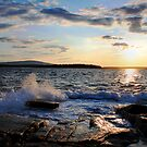 Some Views of Acadia National Park by Scott Bricker by Scott Bricker