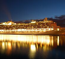 crown princess cruise liner by Ciara(Kevin & Paula) Neupert