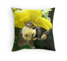 Bumbley Bee Throw Pillow