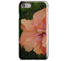 A magic moment when a new flower blossoms........! iPhone Case/Skin