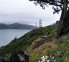 Golden Gate Bridge, San Francisco Calif. by NancyC