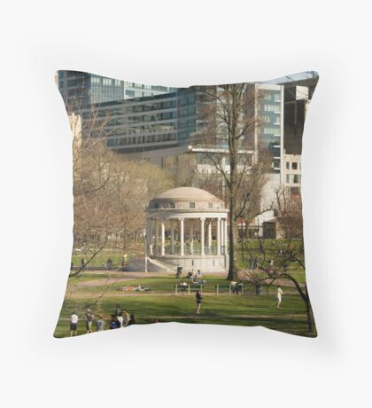 Boston Common Throw Pillow