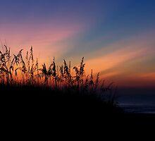 Sand Dune at Sunrise by Joe Norman