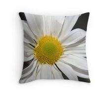 white daisy2 Throw Pillow