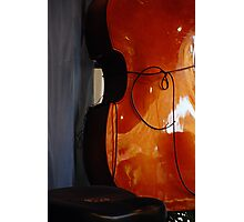 Stand Up Bass Photographic Print
