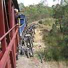 Riding Capella - Over The Bridge by Vanessa Barklay