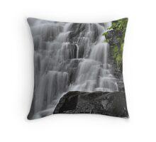 Lower Clinton Falls Detail Throw Pillow