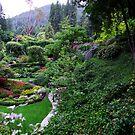 Sunken Garden No.1 by George Cousins