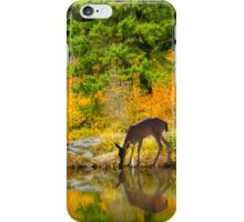 Tuti Fruti Colors and Eye Candy Reflections iPhone Case/Skin