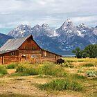 Grand Teton National Park by Teresa Zieba