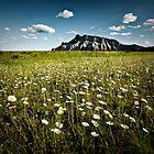Mt Rundle : Banff National Park by LukeAustin