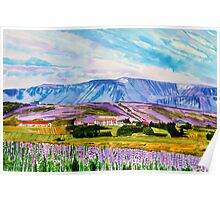 The landscape of Lupina &  the mountain Esja Poster