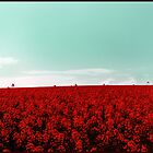 STRAWBERRY FIELDS FOREVER by SimoneYvette