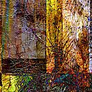 ancient surfaces...fusion by banrai
