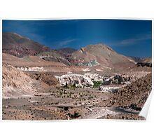 Mantancilla de Atacama Poster