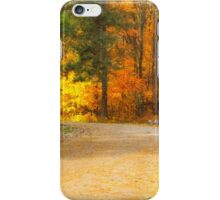 The Red Shed iPhone Case/Skin
