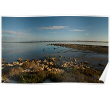 Coorong 4 Poster