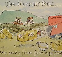 Country Code 6 by Martin Williamson (©cobbybrook)