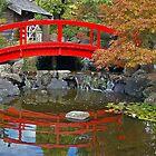 Japanese Gardens - Botanical Gardens (Hobart) by ShutterBuggz