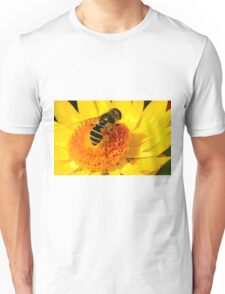 The Big Bee on the Yellow Flower Unisex T-Shirt
