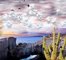 1242-Baja Sunset by George W Banks