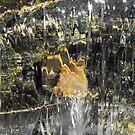 Sparkle and Shine by Tracy Wazny