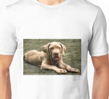 #419  Charlie Laying Down Unisex T-Shirt
