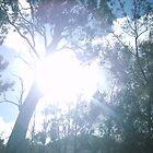 Shining through by Airwalker