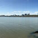George Washington Bridge panorama by cammisacam