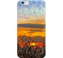 Indiana Sundown iPhone Case/Skin