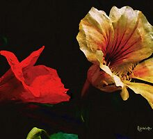 Color and Light Suspended by RC deWinter