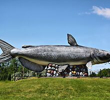 Wahpper - The World's Largest Catfish by Teresa Zieba