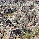 Badlands National Park, South Dakota, US by Teresa Zieba