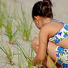 BeachComber by itsmymoment