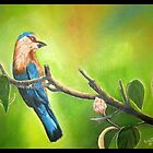Indian roller by usharai