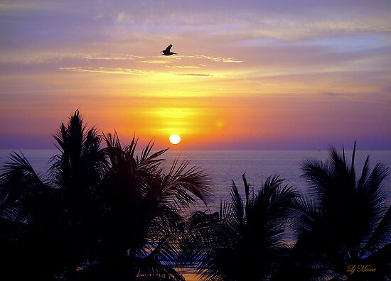 A Glorious Mexican Sunset by LjMaxx