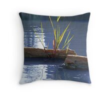 Waterscape Throw Pillow