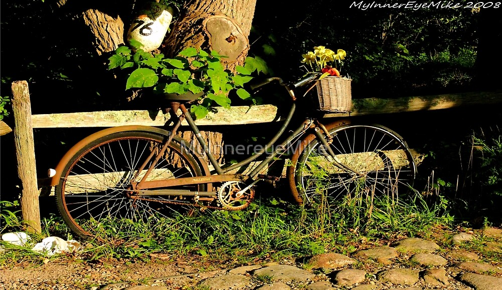 #489    Bicycle With Basket & Flowers by MyInnereyeMike