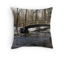 071706-13 Throw Pillow