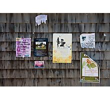 Vineyard Notices Photographic Print
