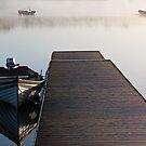 Misty Morning by Alan McMorris