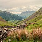Lakeland View, Cumbria. UK by Pauline Tims