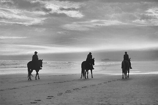 Three Amigos by ©Dawne M. Dunton