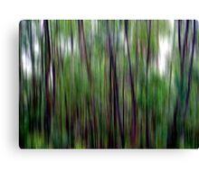 Bushwalking Canvas Print