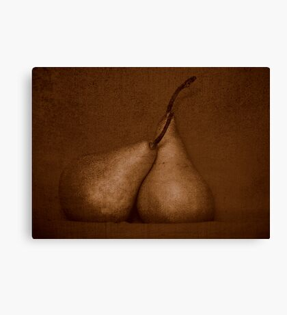 Pears in Sepia Canvas Print