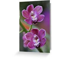 Mystical Orchids Plate No. # V Greeting Card