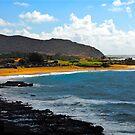 Hawaiian Dreaming by Michele Duncan IPA