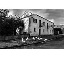 Old Noarlunga Mill 1 Photographic Print