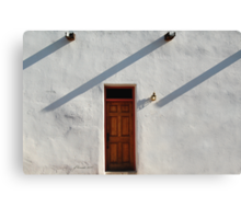 Late Entry Canvas Print